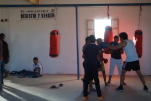 Young Sahrawis learn to box